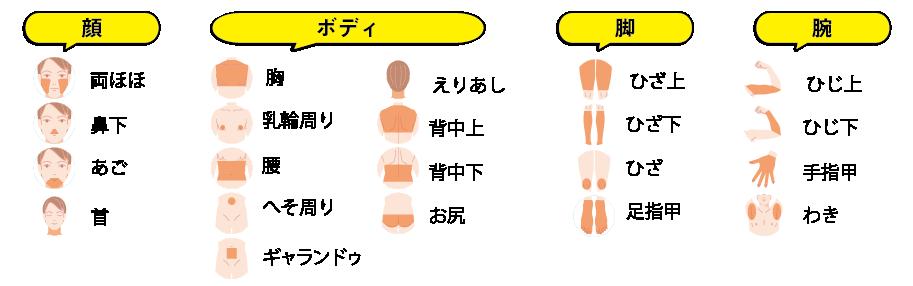 メンズサロンGOGOの脱毛部位情報